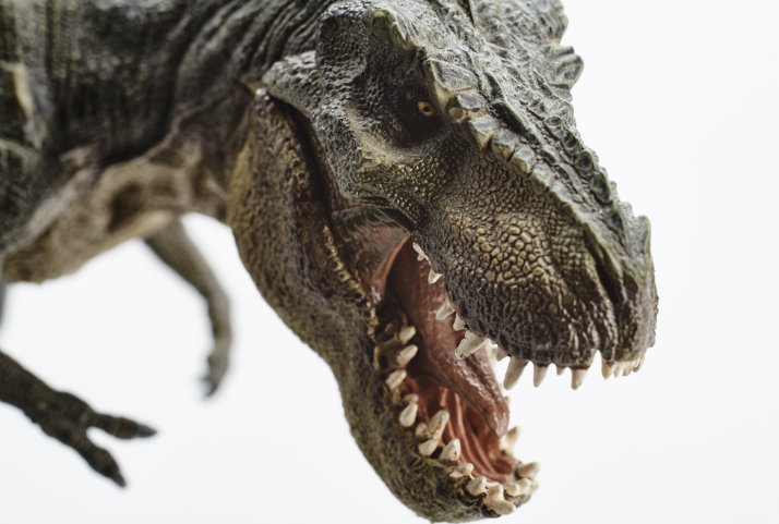 Scientists Find T.Rex Soft Tissue, So We're That Much Closer To Jurassic Park