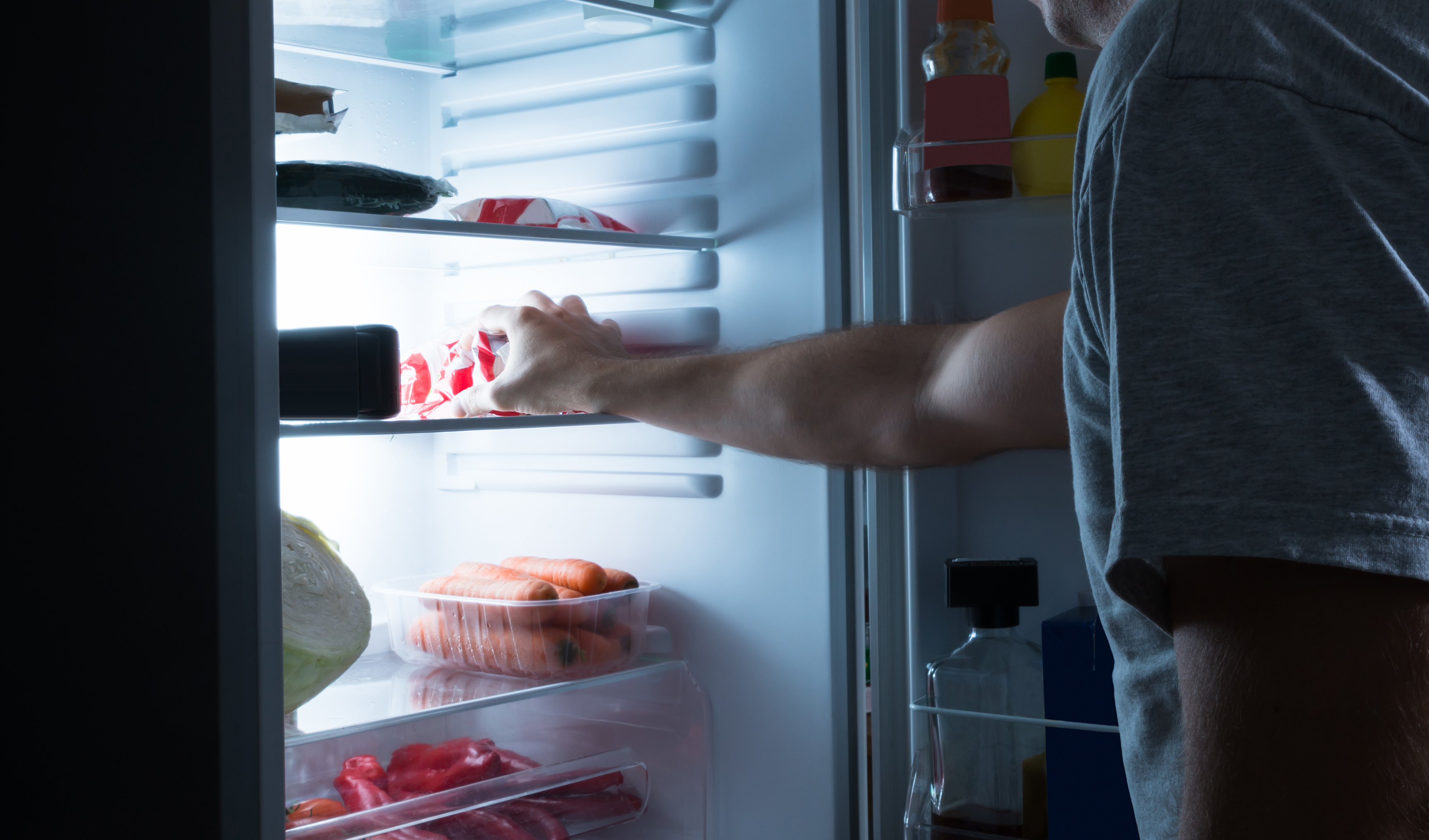 An Ode To The Single Dude's Refrigerator
