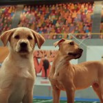 The Best Part of Super Bowl Week Is The Puppy Bowl Locker Room Cam