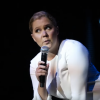 "Watch Amy Schumer Humiliate A Dude Who Yelled ""Show Us Your Tits"" At Her Show"